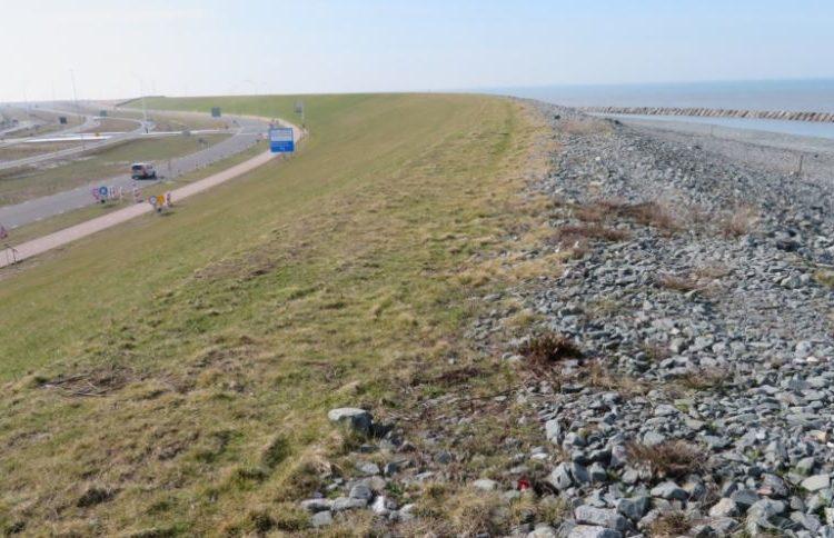Eneco wins tender for Maasvlakte 2 wind farm
