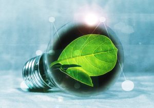 Dutch State to issue green bond in 2019
