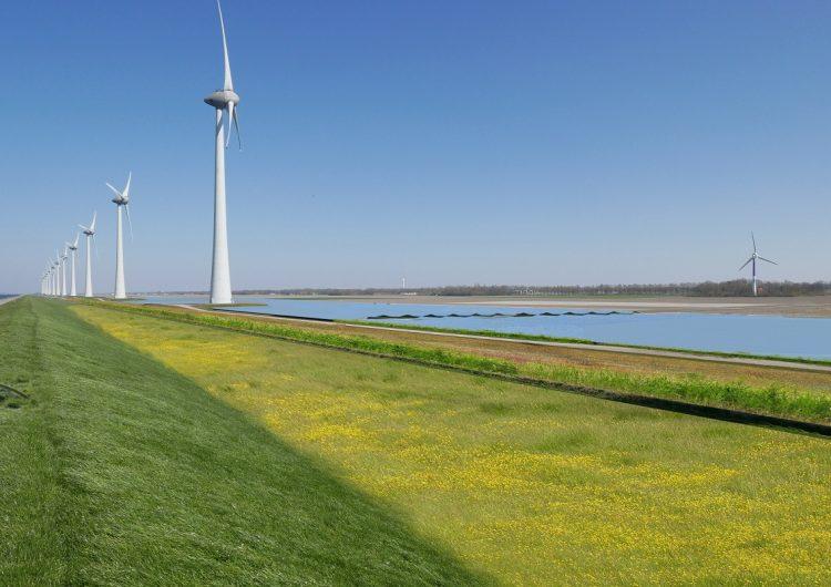 Large solar park to rise between Noordoostpolder wind turbines