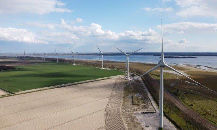 Kallista commissions Oostflakkee Wind Farm