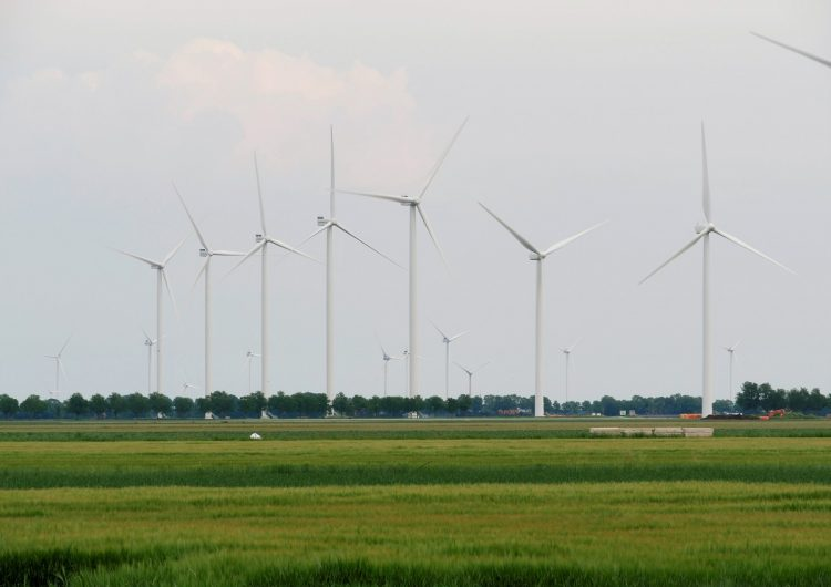 Dutch government to create environmental assessment based on European law